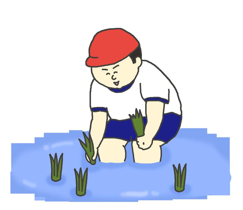田植えの体験学習のイラスト