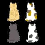 色々な模様の猫の後ろ姿