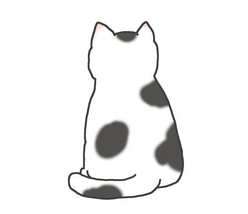 白黒ブチ猫の後ろ姿