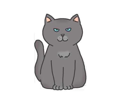 グレーのネコ
