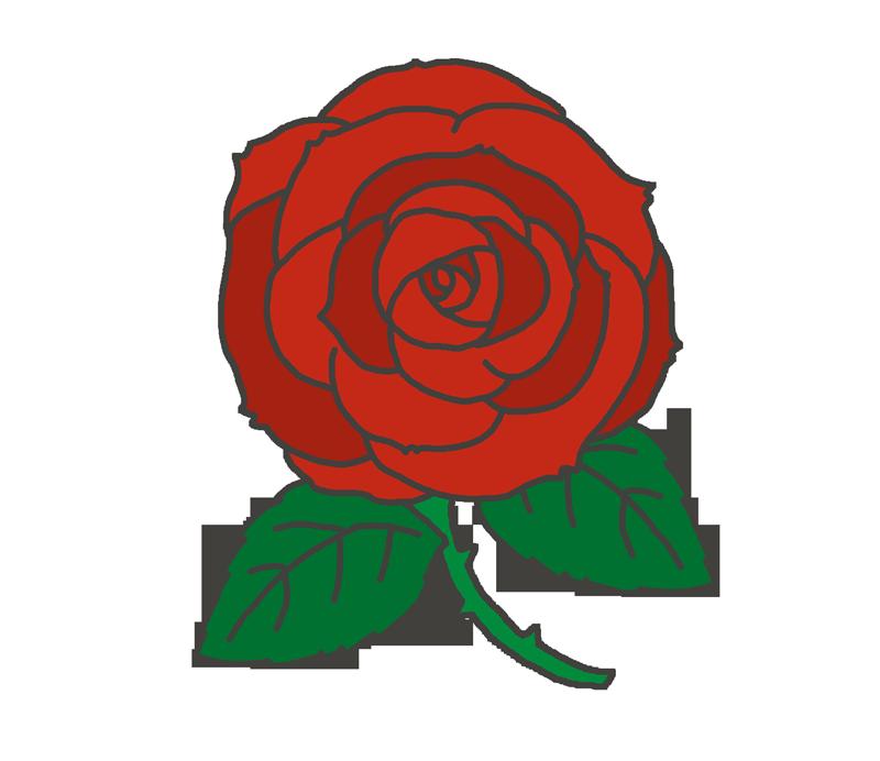 赤い薔薇バラのイラスト イラストの里
