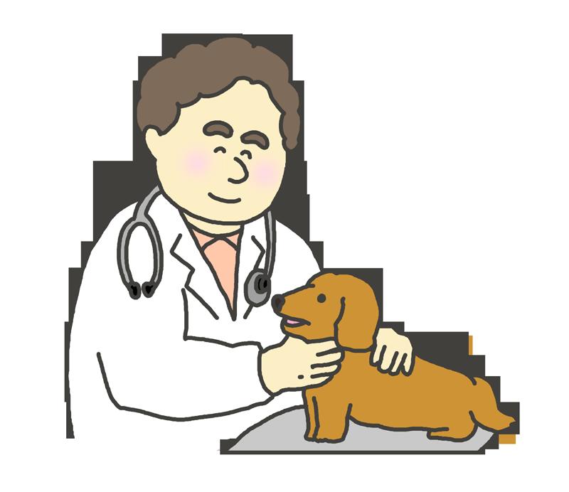 獣医師のイラスト