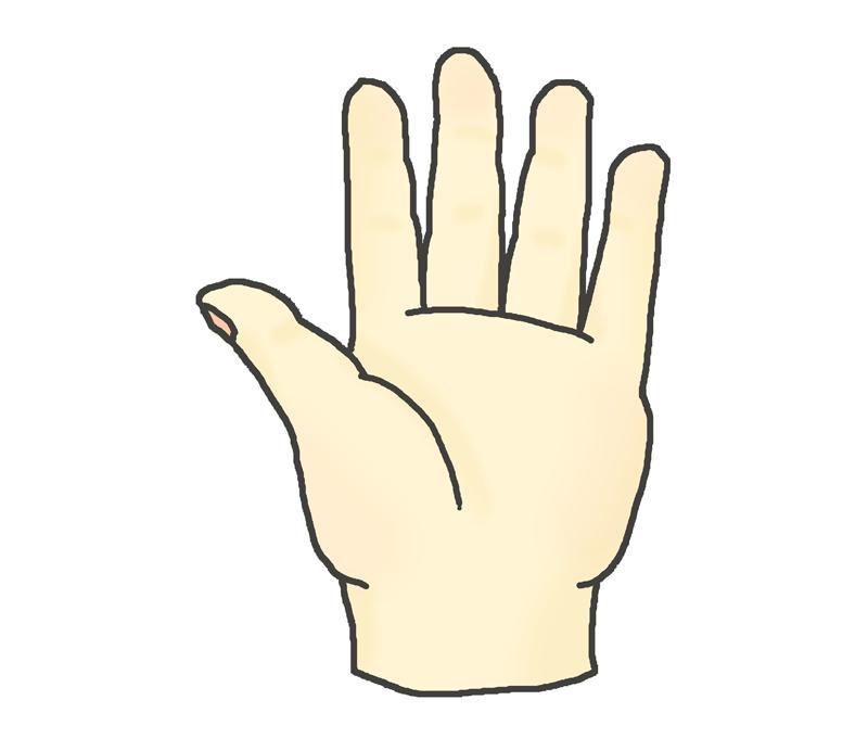 左手のひらのイラスト