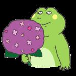 カエルと紫陽花のイラスト