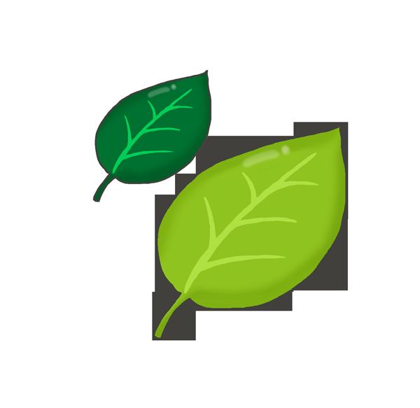 葉っぱのイラストのアイキャッチ画像