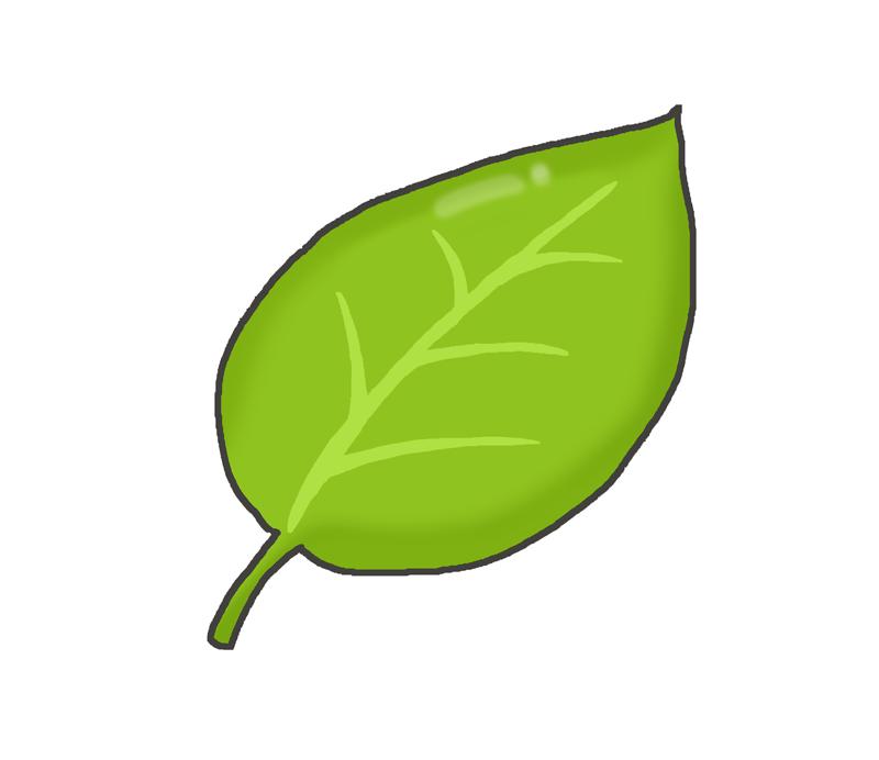 黄緑色の葉っぱのイラスト