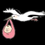 赤ちゃんを運ぶこうのとりのイラスト