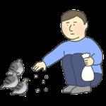 鳩に餌やりをする男性のイラスト