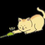 ねこじゃらしで遊ぶ猫のイラスト