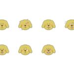 犬の表情パターン