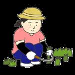草むしりをする女性のイラスト