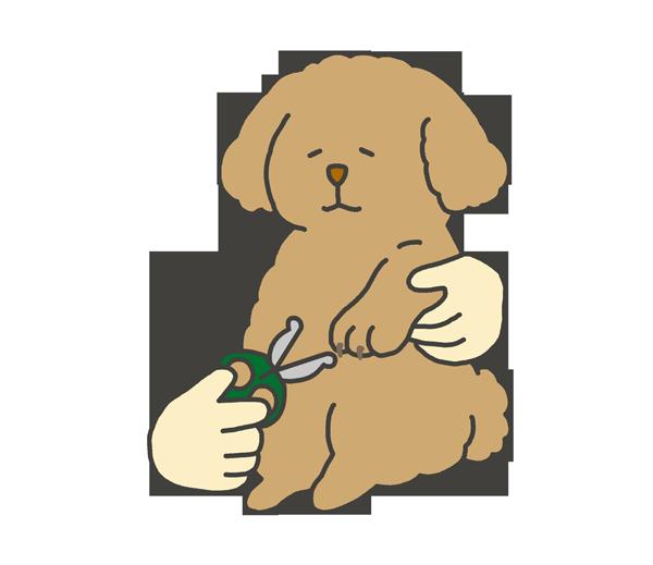犬の爪切りのイラスト
