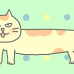 猫のバーチャル背景のイラスト