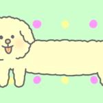 犬のバーチャル背景
