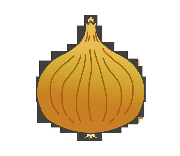玉葱のイラスト